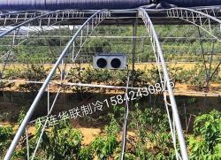长海县制冷大棚降温设备